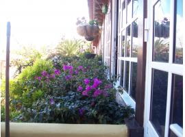 Apartment for sale - El Sauzal - Tenerife