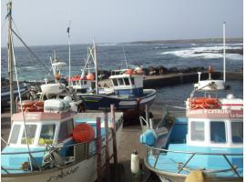 Bungalow for holiday rental - Teguise - Lanzarote
