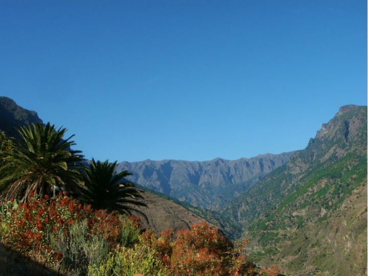 Haus zu kaufen Tijarafe La Palma